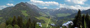 Ausblick auf das Alpbachtal