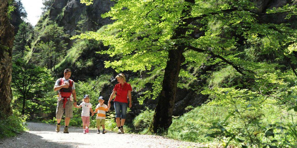 Familienerlebnis Bergwanderung