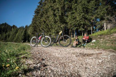 Radfahren durch Wald und Wiesen